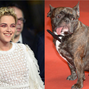 Kristen Stewart and Gary Fisher (you know, Carrie Fisher's dog) are now BFFs
