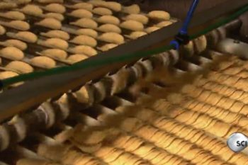 This video showing how Pringles are made is more fascinating than you could imagine
