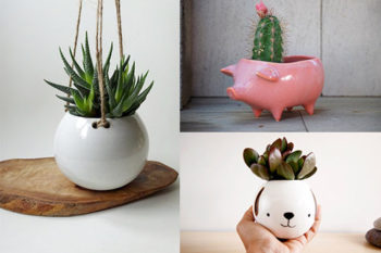 10 dreamy planters for all your favorite succulents