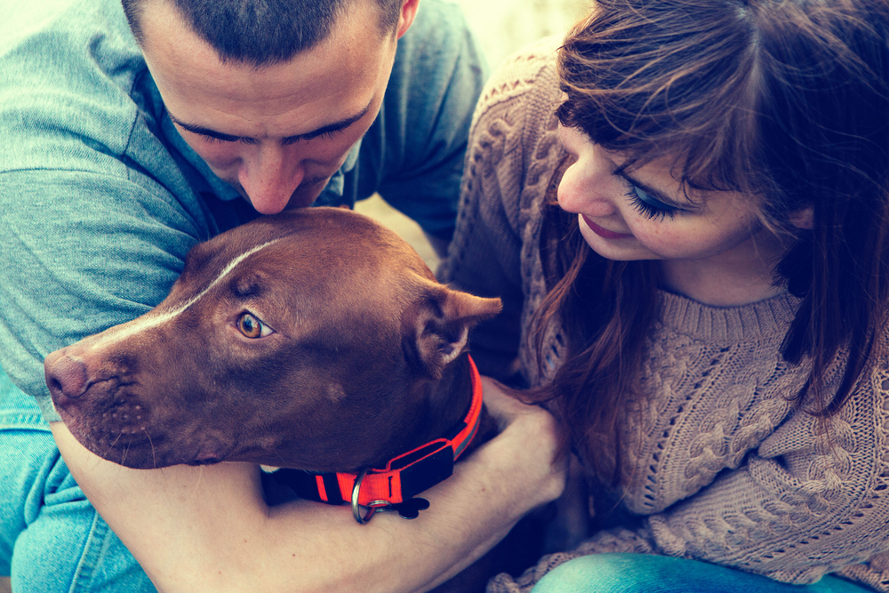 This app lets you borrow someone else's dog and we're totally here for it