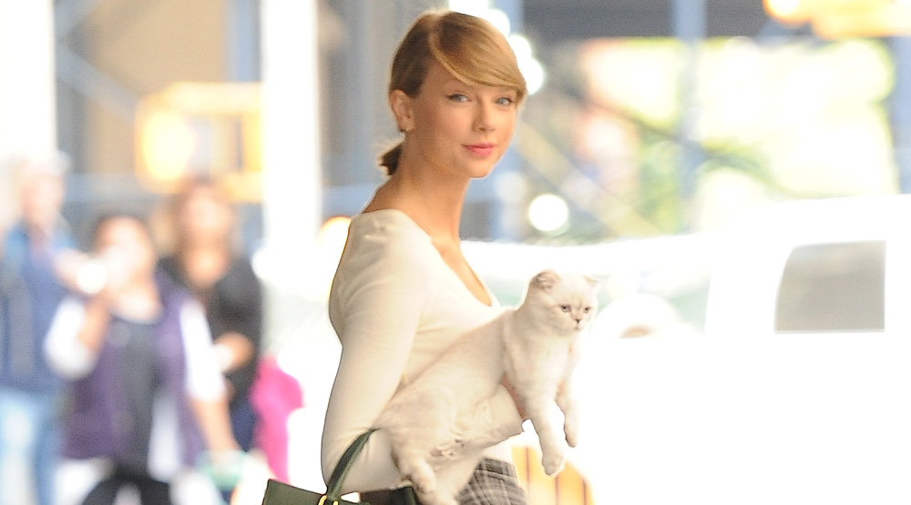 88 Taylor Swift Has Her Cats Names Trademarked Billy The Kidd Meet