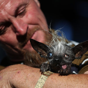 This is officially the world's ugliest dog (but we think she's precious!)
