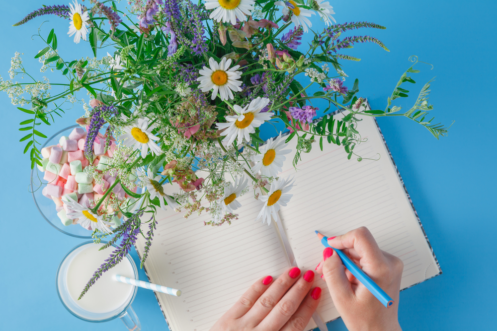 8 planners that begin in August so you can get organized ASAP