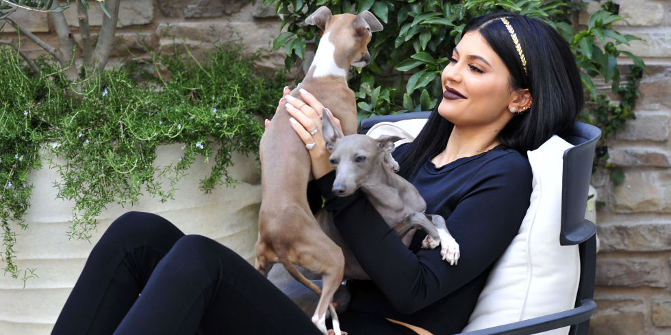 "Kylie Jenner's adorable dogs were transformed into ""Secret"