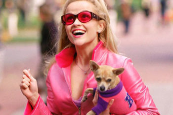 "Best lines from ""Legally Blonde"" that you should use in your vocabulary"