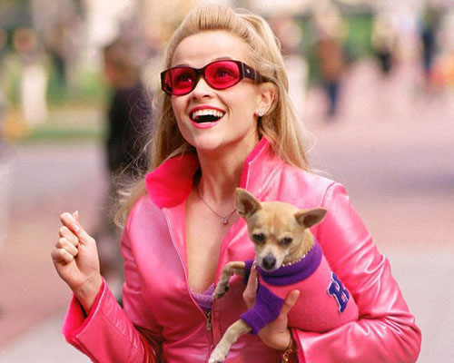 """Best lines from """"Legally Blonde"""" that you should use in your vocabulary"""