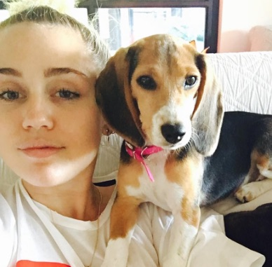 Miley Cyrus' new ring on her ring finger is SO sparkly and gorgeous