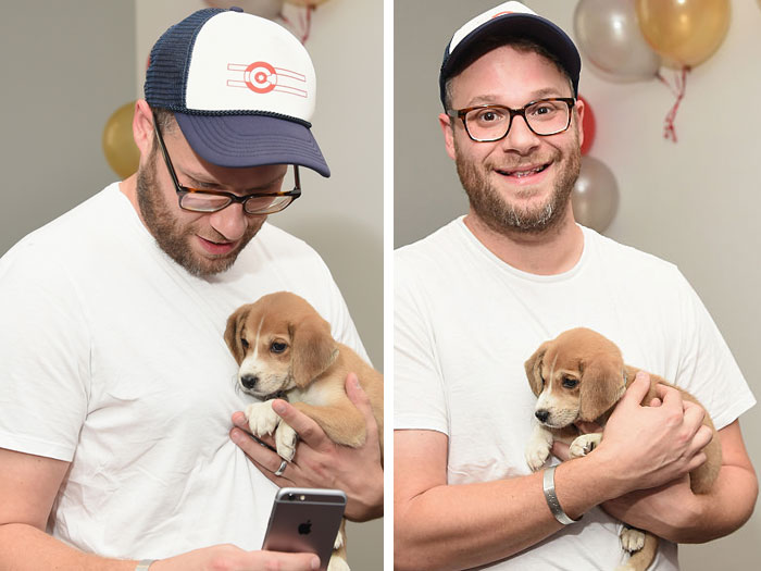 Seth Rogen totally lost it while meeting the world's cutest puppy