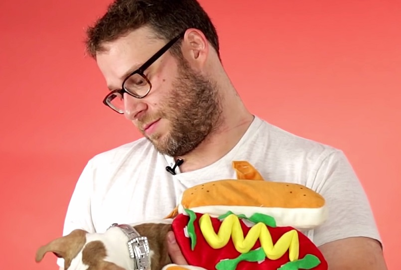 Seth Rogen tried to do an interview while playing with puppies and we are overwhelmed