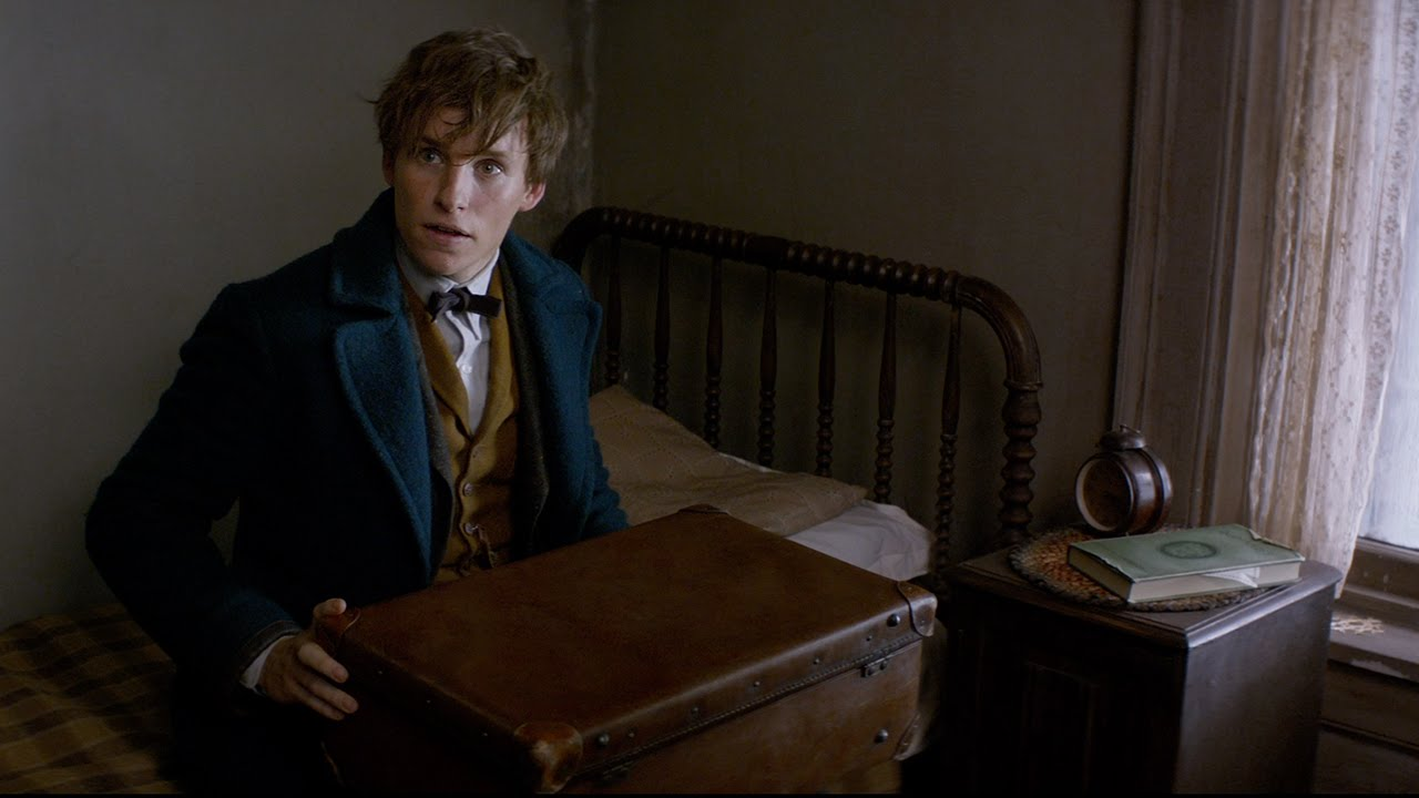 """Here's everything we know about the beasts in """"Fantastic Beasts and Where to Find Them"""""""
