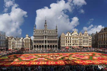 There's an incredibly beautiful flower carpet in Brussels, and we're dying to go see it