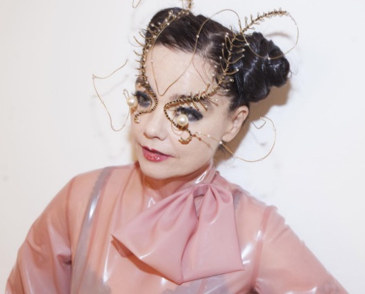 This is what we learned about the goddess known as Björk from her Reddit AMA