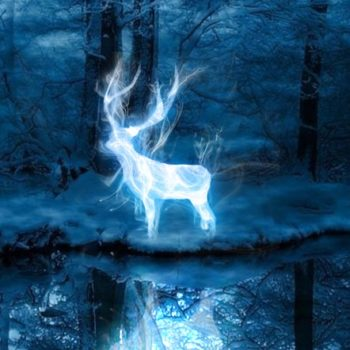 15 funniest Twitter Patronus reactions because not everyone is pleased with their Pottermore spirit animal