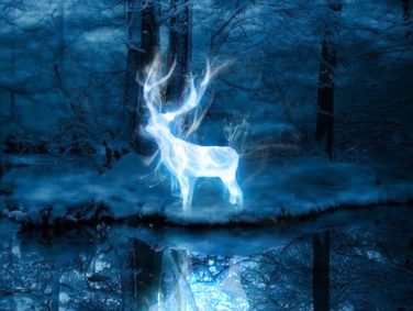 JK Rowling has some awesome information for anyone mad that they got a mole Patronus