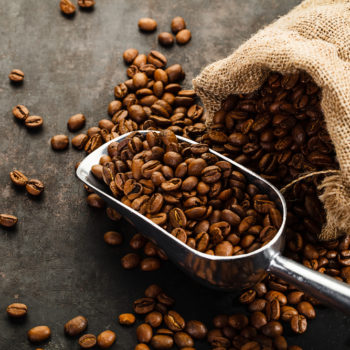 Science says climate change is affecting coffee bean growth and we are getting nervous