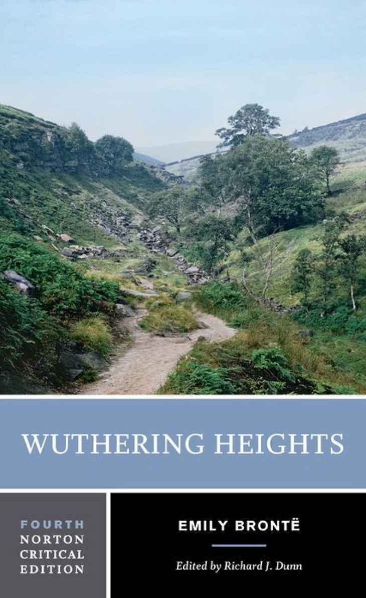 wuthering heights emily bronte essay