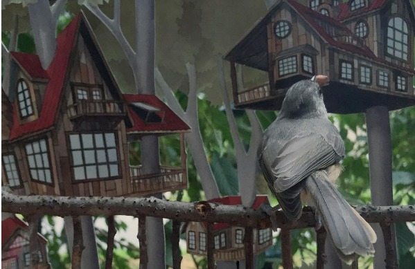 You HAVE to see these amazing tiny houses this wildlife illustrator builds for birds