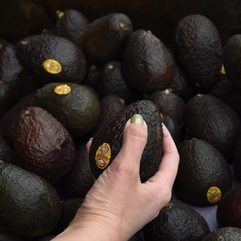 Avocados are probably going to get way more expensive, and we can't deal