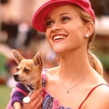We have a feeling Reese Witherspoon's IRL doggie would have been best friends with Bruiser Woods