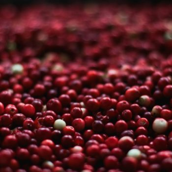 "This study says you should stop using cranberry juice to ""cure"" your UTI"