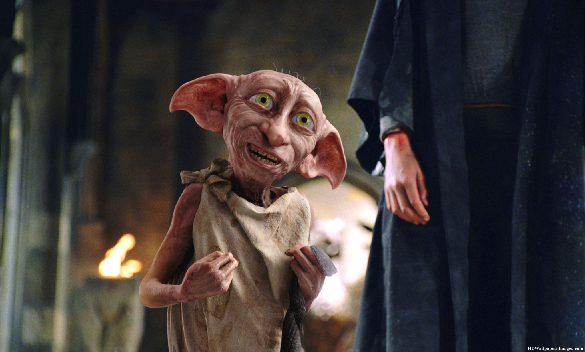 A woman dressed her hairless cat up as Dobby for Halloween, and it is EVERYTHING