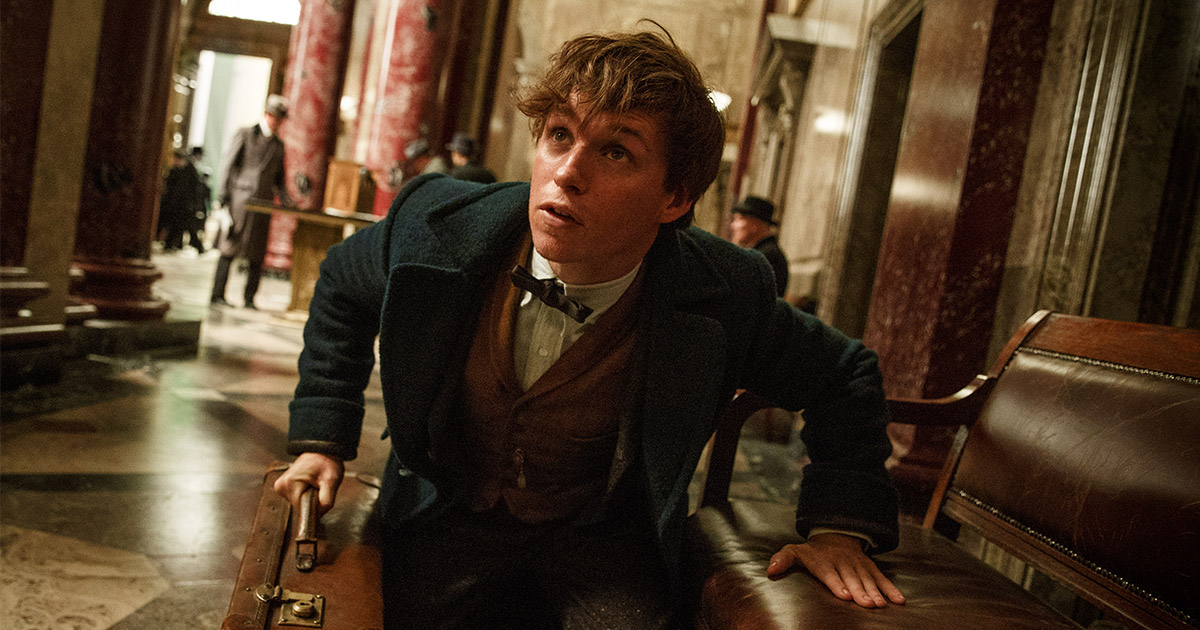 "Even the cast of ""Fantastic Beasts and Where to Find Them"" didn't know there would be five films"