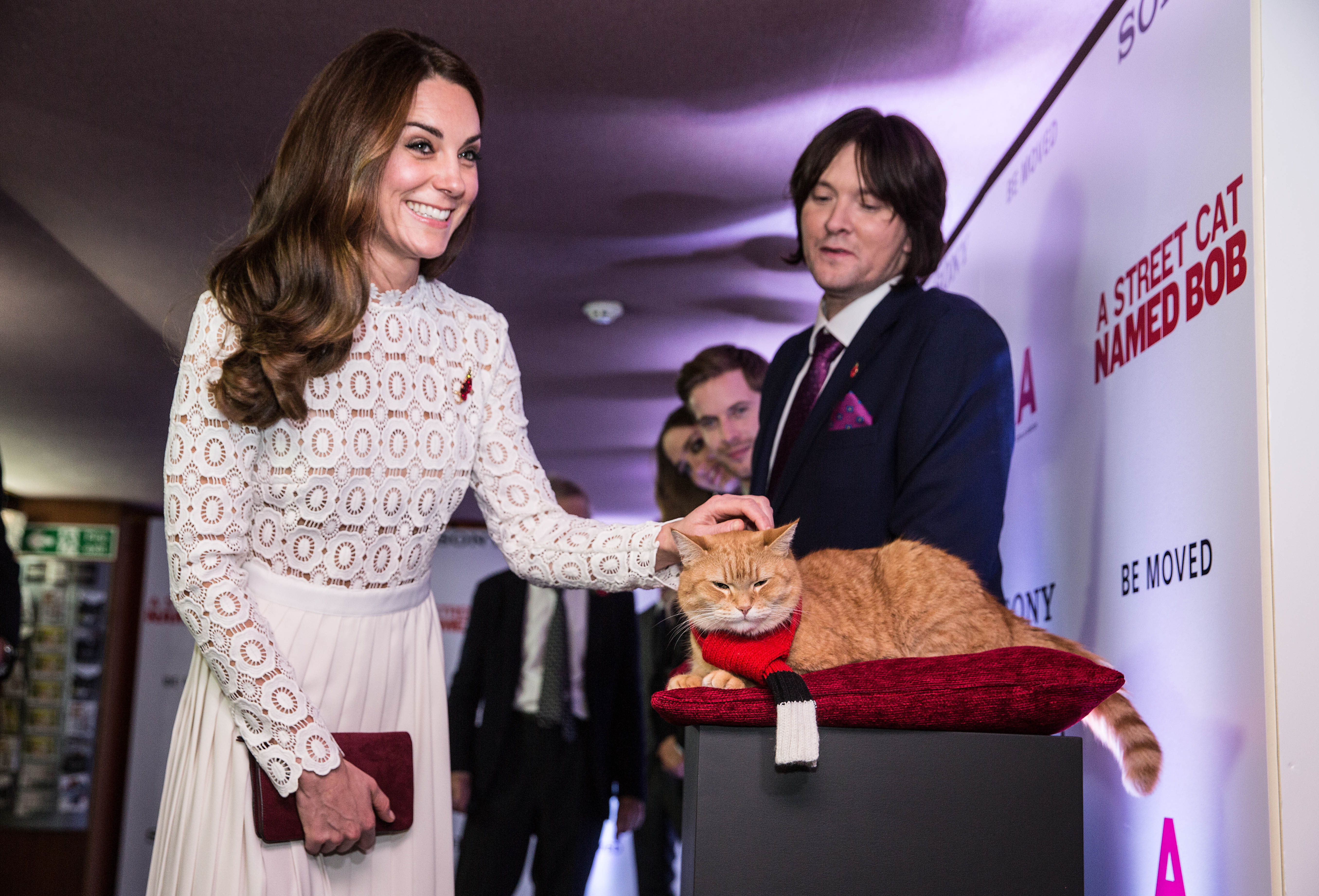 This cat's reaction to Kate Middleton is making our day