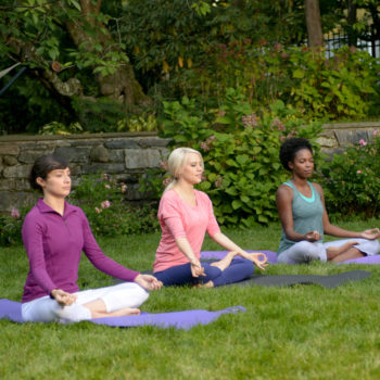 Election Day meditation flash mobs bring voters much needed zen at polling places