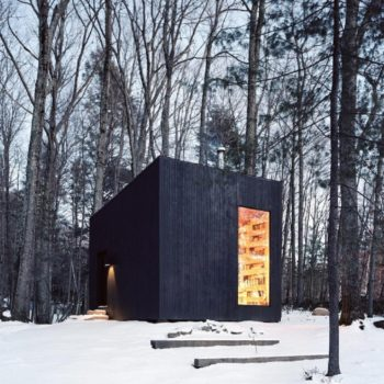 This minimalist cabin in upstate New York is a book-lover's dream and the perfect escape from life right now