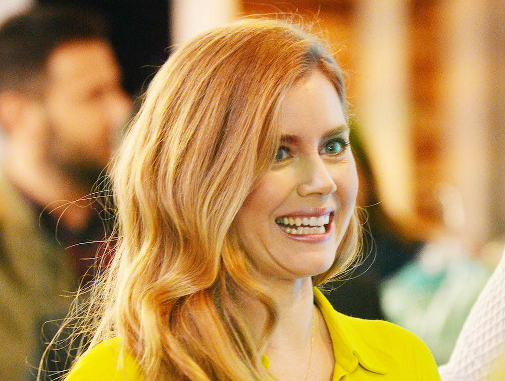 Amy Adams is the bright ray of sunshine that we need right now