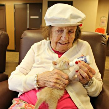 An animal shelter and an assisted living facility are saving kittens and it's the positivity we need
