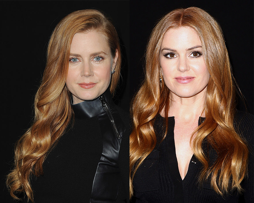Isla Fisher and her hubby trolled friends and family with a holiday card pic of Amy Adams