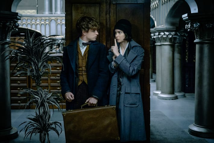 """""""Fantastic Beasts and Where to Find Them"""" has a surprising connection to Bellatrix Lestrange"""