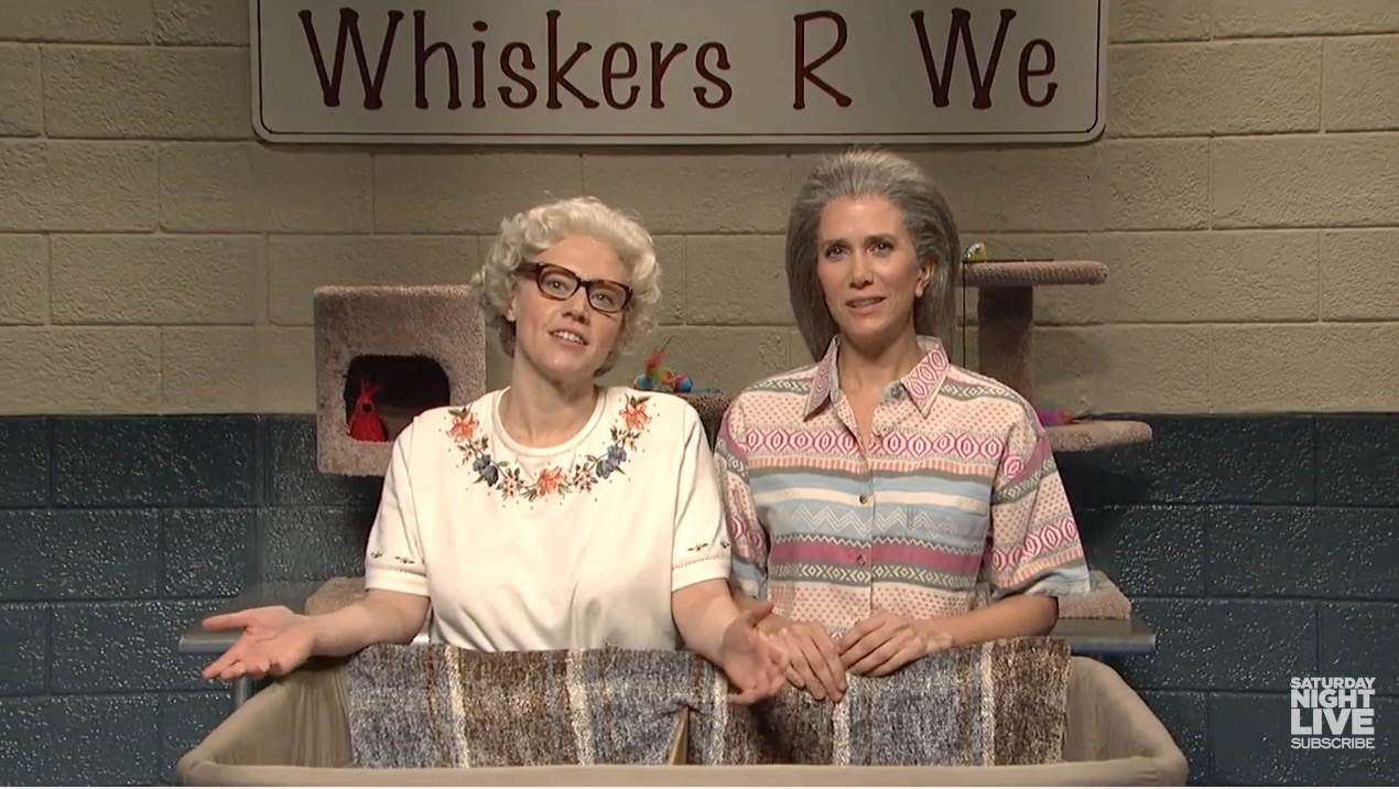 Kate McKinnon and Kristen Wiig are making us want to adopt a ghost cat from 'Whiskers R We'