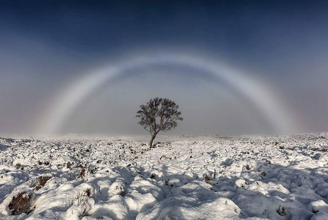 """This amazing photo of a """"fogbow,"""" aka a fog rainbow, is seriously blowing our minds"""
