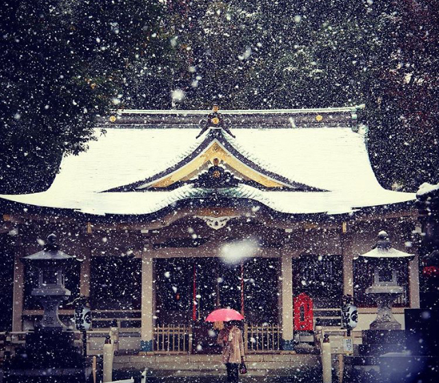 Tokyo had their first November snow in over 50 years and it's a winter wonderland
