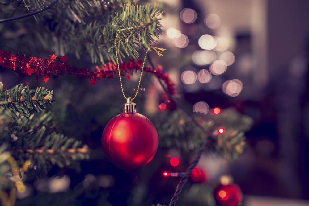 Eeek, you may want to read this before you buy a Christmas tree