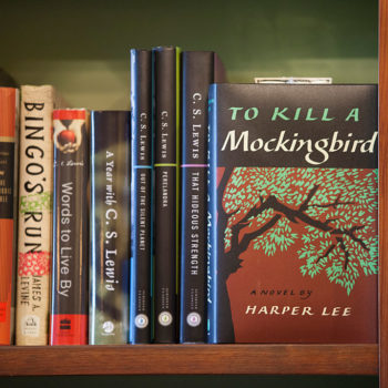 """To Kill a Mockingbird"" was just banned in these schools"