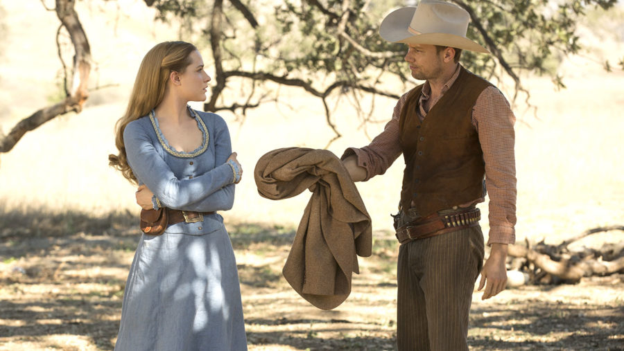 """Westworld"" star says no one's figured out the truth and we are like whoa"