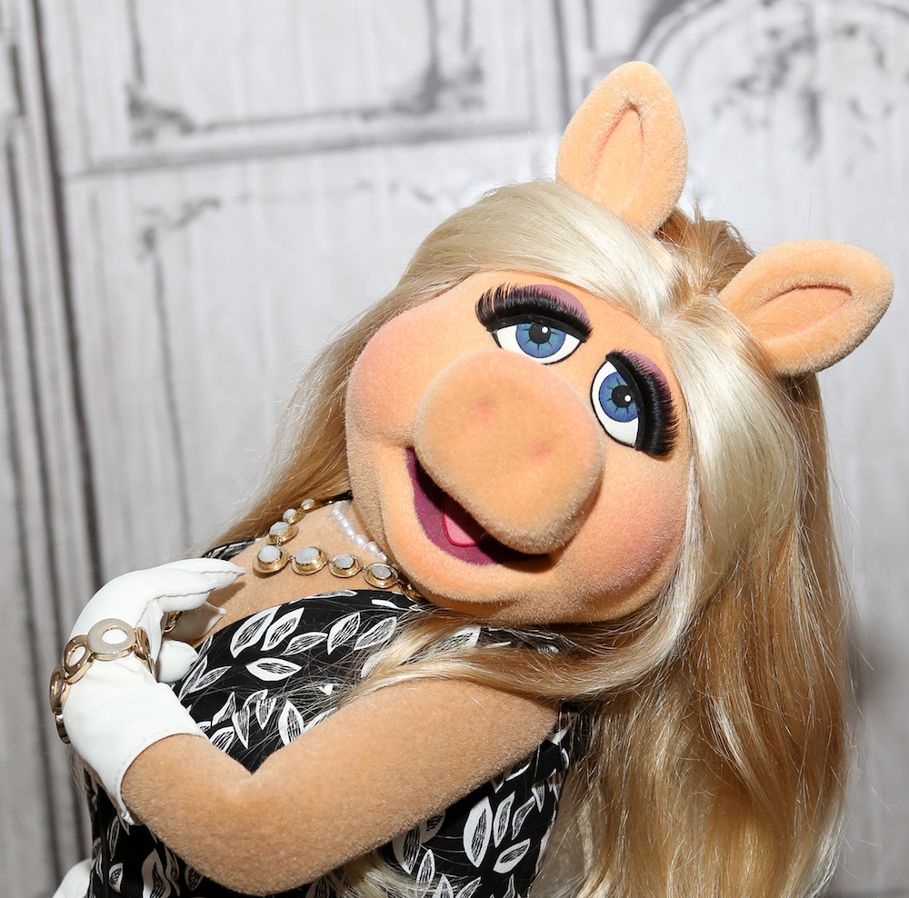 Miss Piggy has a new advice column, so you can ask her your most important questions