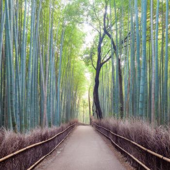 This Japanese city was the most-pinned international destination of 2016, and it is a historical paradise