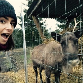 Lily Collins' Christmas photos from London are like the perfect vacation on our screens