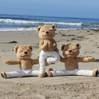 This teddy bear will pretty much guarantee a more mindful 2017