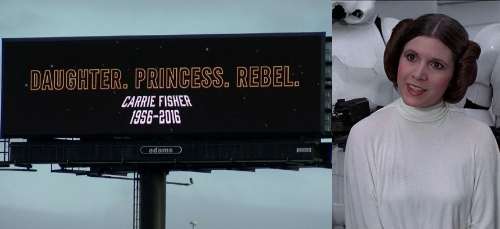 There Are Carrie Fisher Billboards Popping Up All Over The Country, And  They Are Beautiful