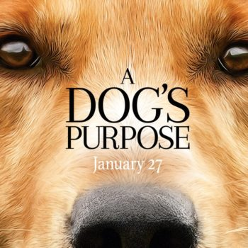 "Someone mashed up the trailers for ""A Dog's Purpose"" and ""The Bye Bye Man"" and we are afraid forever now"