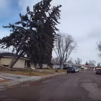 Here's a video of high winds ripping a tree from the ground in Colorado, and it's as terrifying as it sounds