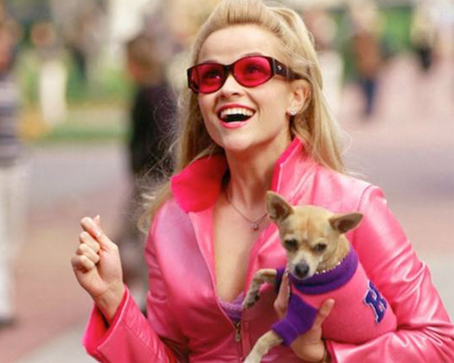 "Get ready, because Reese Witherspoon says now is the time for another ""Legally Blonde"" film!"
