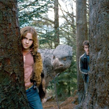 You'll soon be able to venture into Harry Potter's Forbidden Forest IRL — if you're brave enough