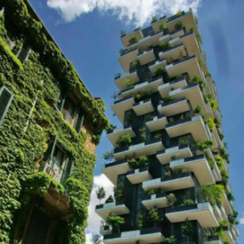 "These ""vertical forests"" look like skyscrapers made of trees, and they're helping China fight pollution"