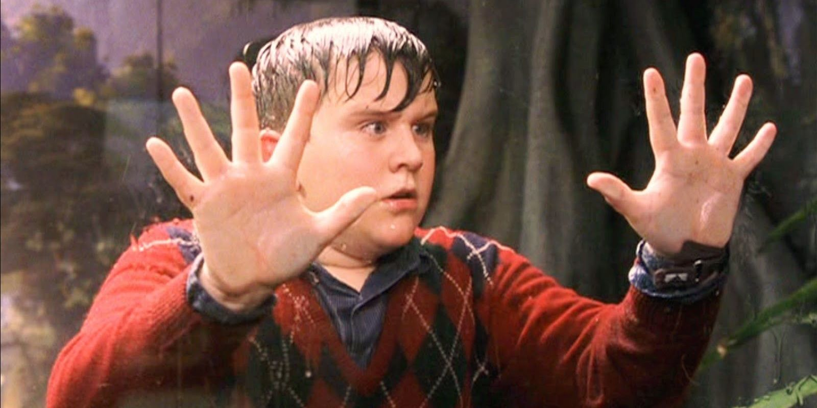 Harry Potter Dudley